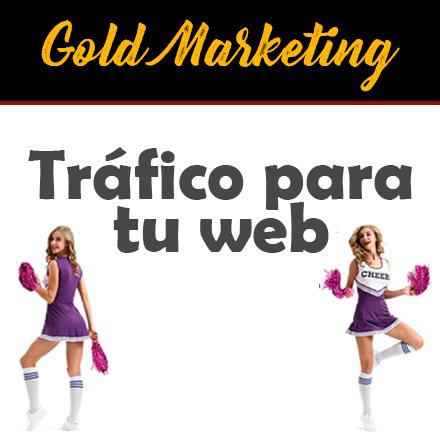 Generar trafico en web